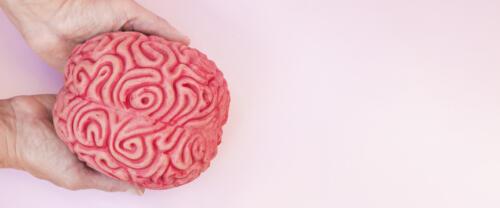 Curso Especializado en Neuropsicología de la Memoria